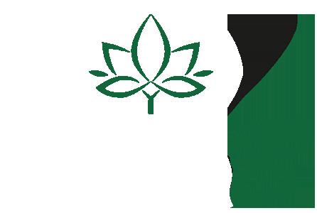 ScanB
